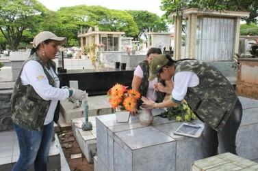 Após finados, o cemitério de Umuarama passará por arrastão contra a dengue