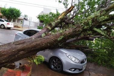 Chuva acompanhada de ventos e granizo deixa estragos em Formosa do Oeste