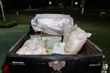 PRE apreende grande quantidade de agrotóxicos contrabandeados na PR-364