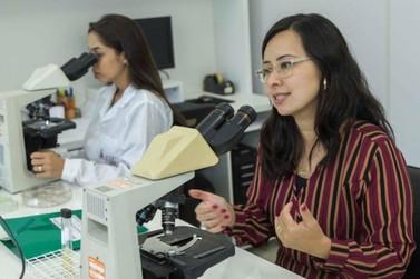 UEM desenvolve teste rápido e seguro que identifica vírus causadores da dengue