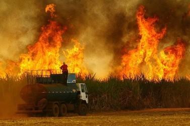 Pandemia gera recomendação para suspensão da queima da cana-de-açúcar na região