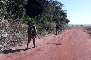 Canil da PM de Umuarama auxilia na busca por casal desaparecido em Goioerê