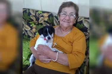 Família faz apelo para encontrar cadela cega que desapareceu em Umuarama