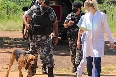 Hospital Veterinário da UEM inicia atendimentos a cães da polícia em Umuarama