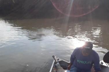 Servidor desaparecido durante o trabalho em fevereiro é encontrado no Rio Paraná