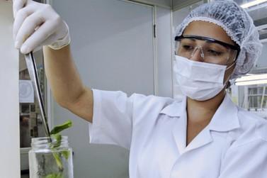 UEM é primeira universidade das Américas com mais pesquisas de mulheres