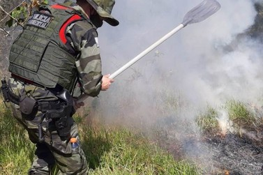 Polícia Ambiental contém incêndio no Parque Nacional de Ilha Grande