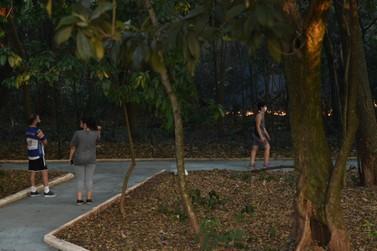Incêndio queima extensa área de vegetação no Bosque do Índio em Umuarama