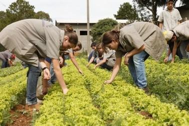 Colégio Agrícola de Umuarama se tornará uma cooperativa-escola