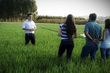 Crea-PR discute o exercício profissional da Agronomia em Umuarama