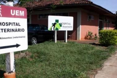 Governo libera horas para contratação de docentes para a UEM