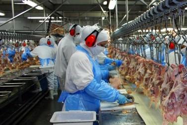 Paraná lidera geração de vagas em grandes empresas