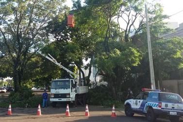 Prefeitura de Umuarama divulga balanço dos estragos causados por temporal