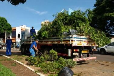 Após o temporal, vem muito trabalho para limpar a sujeira em Umuarama