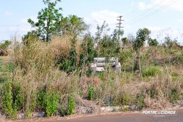 População reclama do número de terrenos com mato em Umuarama
