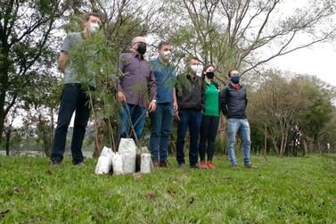 União da Vitória planta 50 mudas de árvores no Parque Ambiental