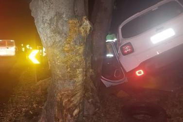 Motorista fica ferida após carro bater em árvore na Dutra, em Barra Mansa
