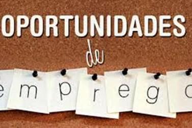 Confira as oportunidades de estágios e empregos oferecidas no Sul do Rio