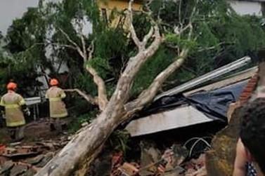 Temporal e ventania causam transtornos no Parque Mambucaba, em Angra