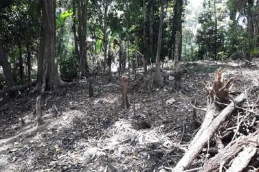 Foragido da Justiça é preso durante fiscalização de crime ambiental em Angra