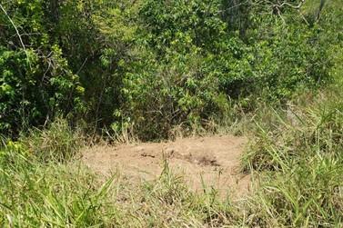 Ossada é encontrada dentro de fazenda, em Resende
