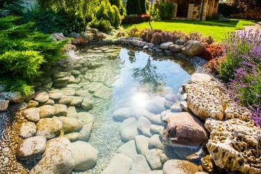 Paisagismo: o que é, diferença entre jardinagem e dicas
