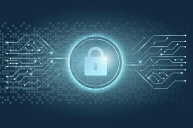Medidas de Segurança Digital são essenciais para evitar perder dados importantes