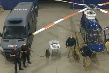 Passageiro é preso com pistolas e munições em ônibus na Via Dutra, em Itatiaia