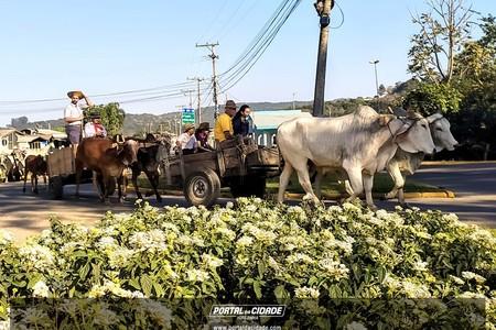 Desfile Alusivo ao Dia do Colono e Motorista
