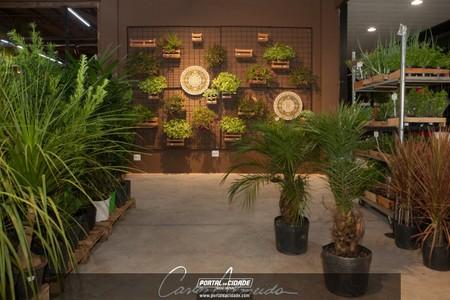 Casa & Verde inaugura unidade do Boulevard Shopping