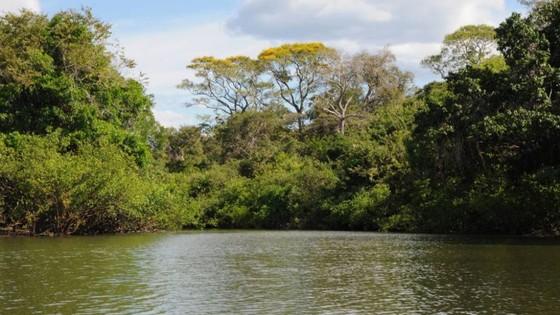 Política de Proteção Ambiental de Lucas do Rio Verde pode sofrer alterações - ® Portal da Cidade | Lucas do Rio Verde