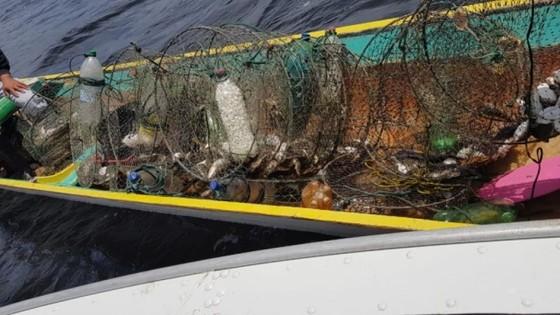 Flagrante PMA flagra pesca ilegal em área de preservação em Cananeia 17/11/2019 às 11h - Adilson Cabral