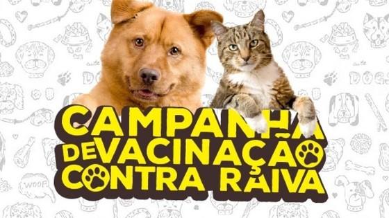 QUEM AMA CUIDA Saúde de Rio das Pedras realiza Campanha de Vacinação contra Raiva 03/11 - Portal da Cidade