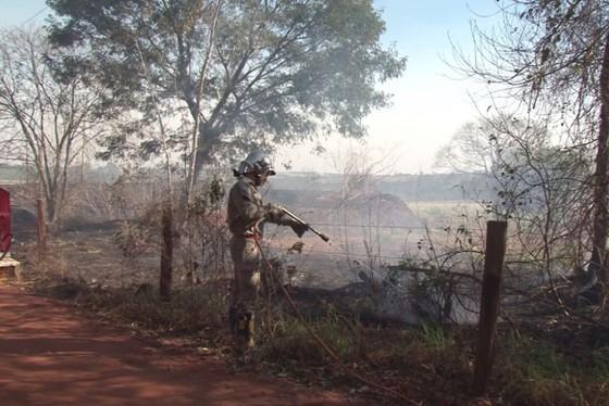 48 focos de incêndio foram registrados no Paraná nesta sexta-feira (9).